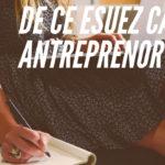 De ce esuezi ca antreprenor?